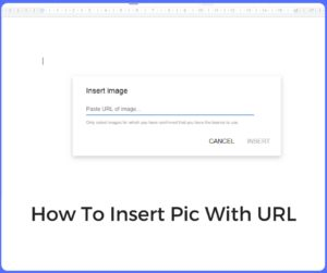 How To Insert Pic With URL